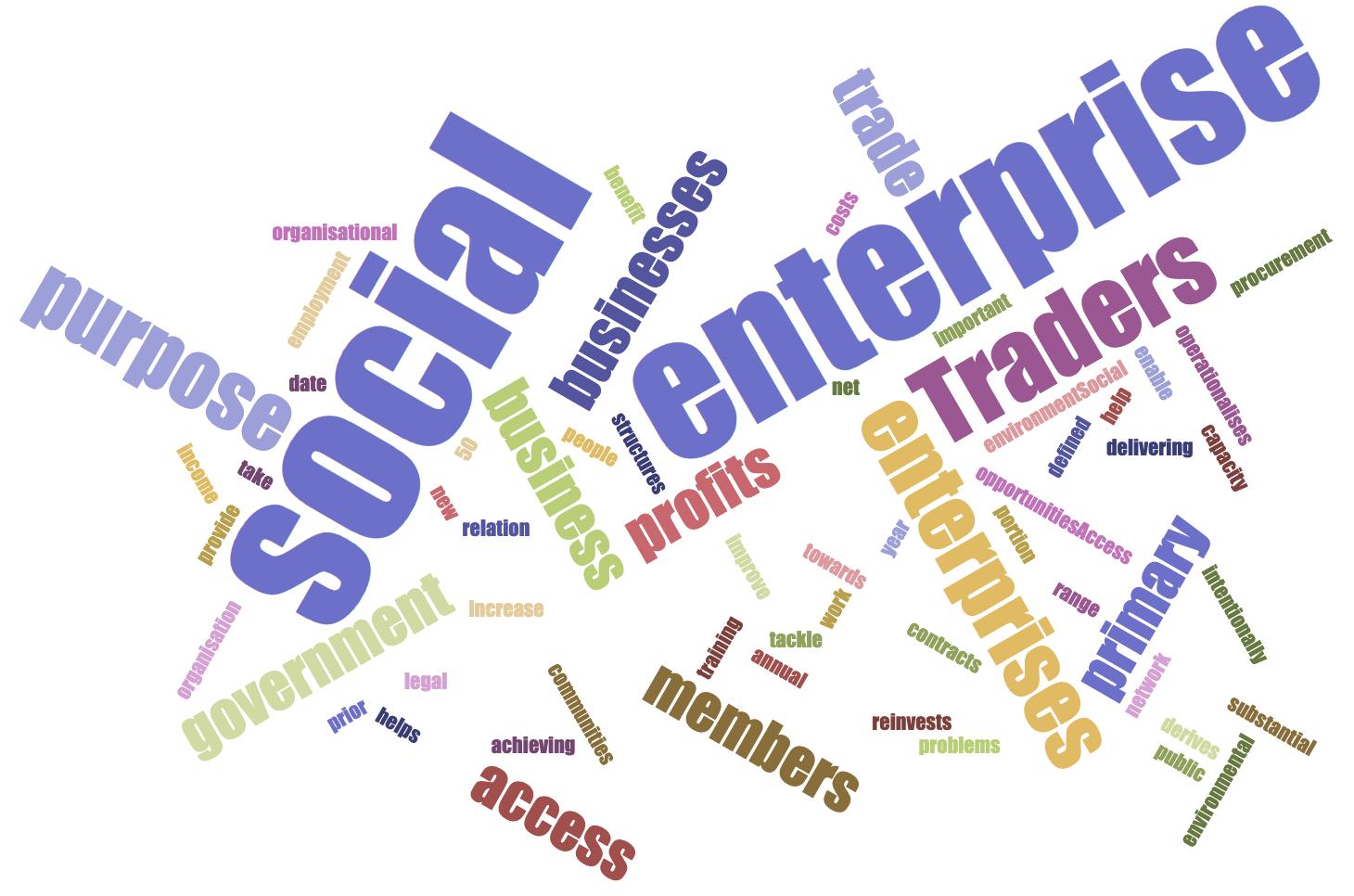 Social Enterprise Wordcloud